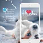 2019-News-App-Motive_Hund