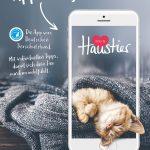 2019-News-App-Motive_Katze
