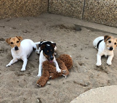 Lulu und Lillifee