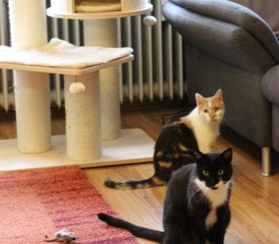 Nils und Serina
