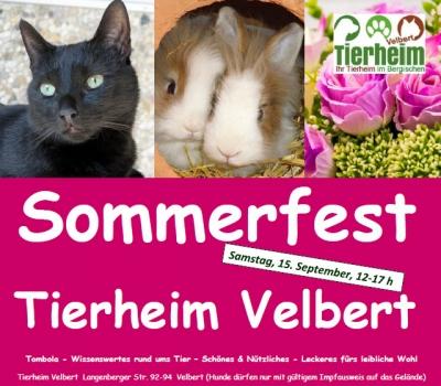 Sommerfest im Tierheim Velbert