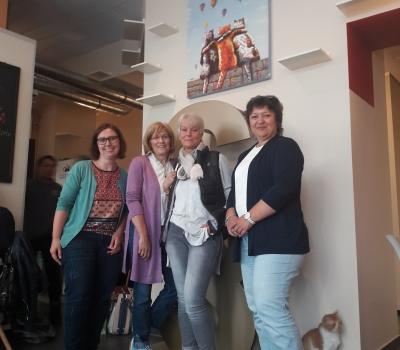Tierheim Velbert goes Catz Cafe Düsseldorf