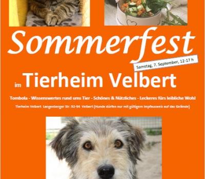 Das Sommerfest im Tierheim Velbert steht vor der Tür