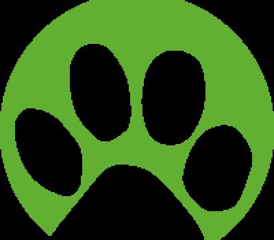 Corona-Vorsichtsmaßnahme Im Tierheim