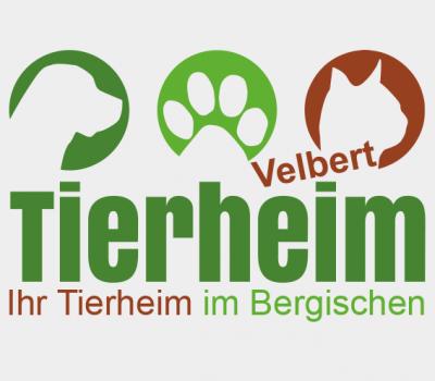 Sanierung der Abwasserpumpenanlage – Tierheim bis voraussichtlich 3.10. geschlossen