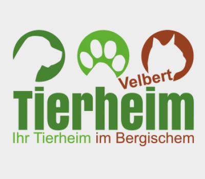 Sanierung der Abwasserpumpenanlage – Tierheim bleibt vom 24. bis 27.9. geschlossen